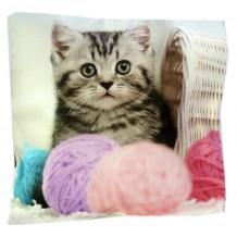 Coussin chat personnalisé